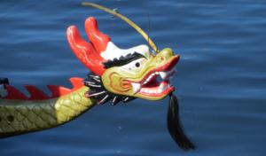 Drachenboot beim Frankfurter Kanu-Verein